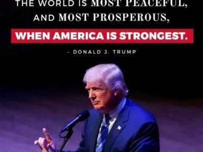 President Trump: Year 1